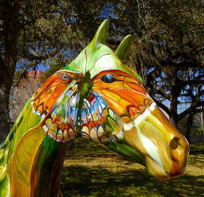 Butterfly Horse Ocala Florida Art Print