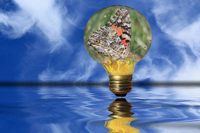 Butterfly In Lightbulb - Landscape Art Print
