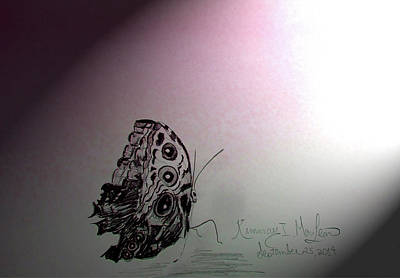 Drawing - Butterfly In The Light by Kimmary I MacLean