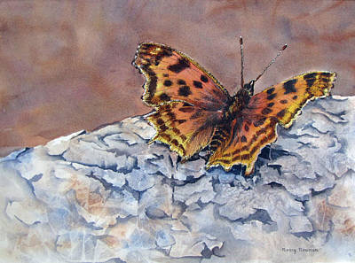 Butterfly-in-the-old-growth-forest Art Print by Nancy Newman