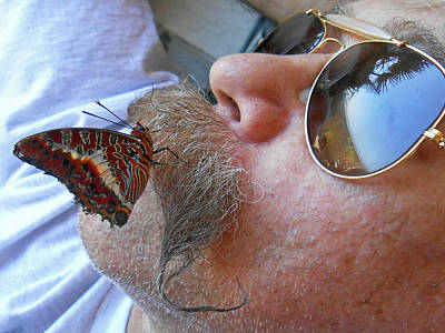 Butterfly Kisses 2 Original
