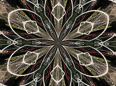 Digital Art - Butterfly Lace by Max DeBeeson