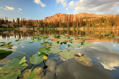 Photograph - Butterfly Lake by Johnny Adolphson
