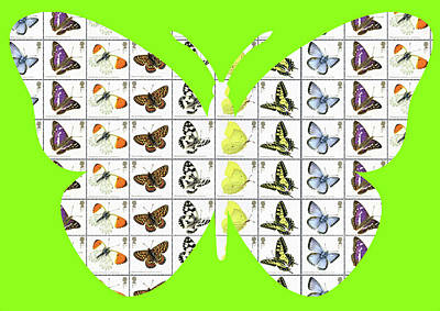 Digital Art - Butterfly - Lime by Gary Hogben