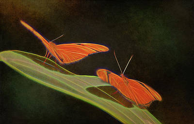Nature Center Painting - Butterfly Love 1a by Walter Herrit