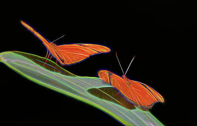 Digital Art - Butterfly Love 1b by Walter Herrit