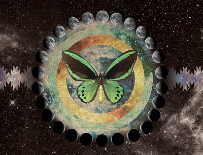 Digital Art - Butterfly Moonphase by Lori Menna
