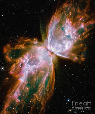 Digital Art - Butterfly Nebula by Nicholas Burningham