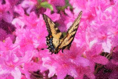 Digital Art - Butterfly Oil Painting by Jill Lang