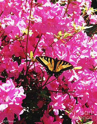 Butterfly On Azalea Art Print by Sabrina Wheeler