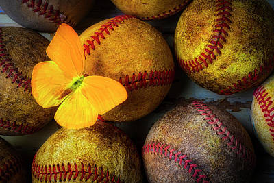 Photograph - Butterfly On Baseball by Garry Gay