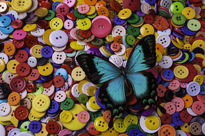 Butterfly On Buttons Art Print