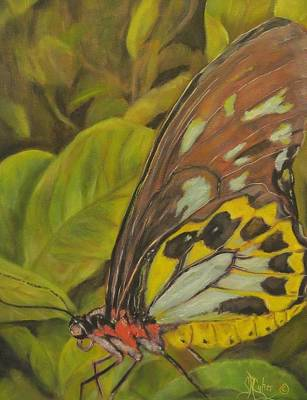 New Orleans Oil Painting - Butterfly On Leaves by Sandra Cutrer