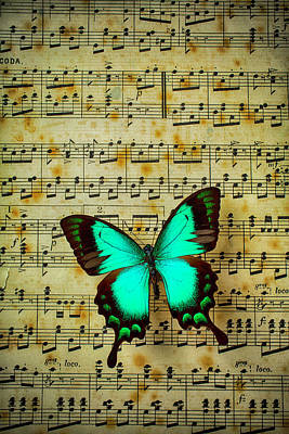 Spiral Photograph - Butterfly On Sheet Music by Garry Gay