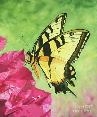 Painting - Butterfly On The Bougainvillea by Jimmie Bartlett