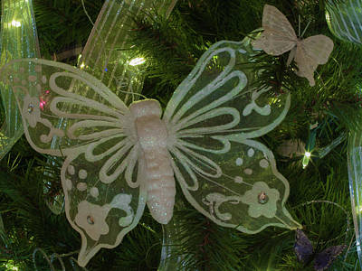 Photograph - Butterfly Ornament by Stewart Helberg