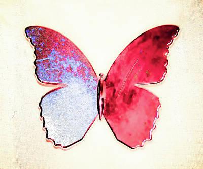 Butterfly Art Print by Paul Jarrett