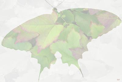 Mixed Media - Butterfly Petal  Mate by Debra     Vatalaro