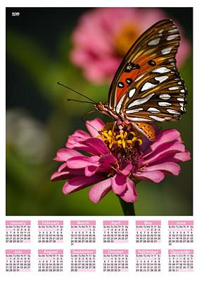 Passion Flower Photograph - Butterfly Poster Calendar by Zina Stromberg