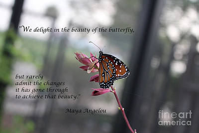 Photograph - Butterfly Quote Art Print by Ella Kaye Dickey