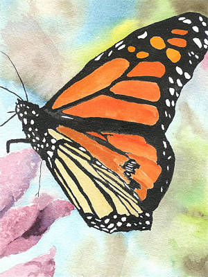 Butterfly Art Print by Robert Thomaston