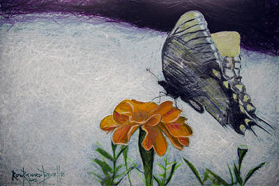 Painting - Butterfly by Ron Richard Baviello