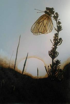 Butterfly Sunrise Original by Marsha Wilson