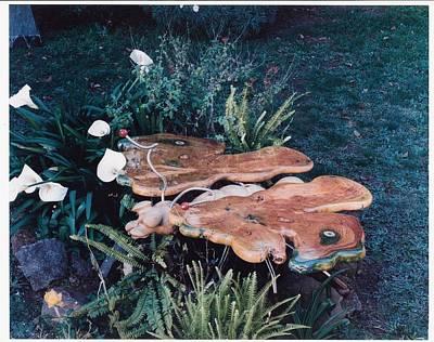 Butterfly Table Print by Lionel Larkin