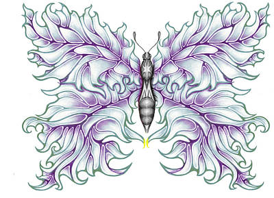 Drawing - Butterfly Tattoo 2 by Karen Musick