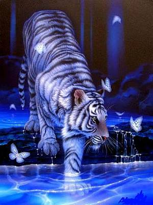 Robert Martin Digital Art - Butterfly Tiger  by Robert Martin
