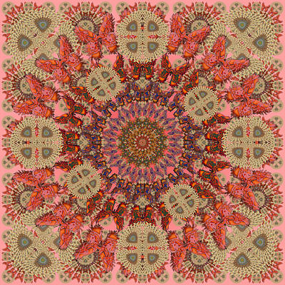 Digital Art - Butterfly Wheel Coral by Deborah Runham