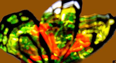 Image Of Captured Landforms Digital Art - Butterfly Wings  Collection K by Debra     Vatalaro