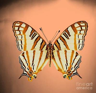 Painting - Butterfly5 by Belinda Threeths