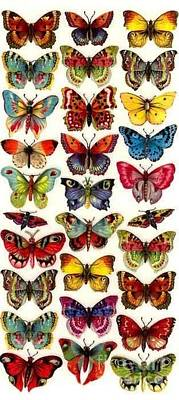 Art Print featuring the painting Butterflys by Pg Reproductions