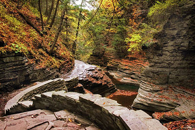 Autumn Leaf Photograph - Buttermilk Falls Gorge by Jessica Jenney
