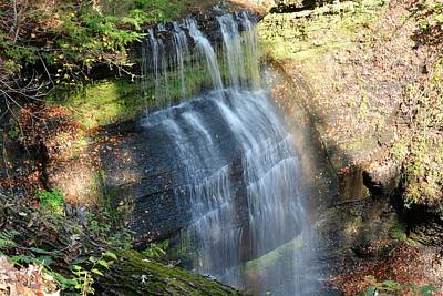 Buttermilk Falls Natural Area Art Print