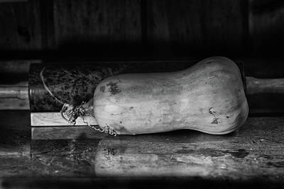 Photograph - Butternut On The Side by Susan Capuano