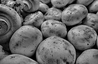 Photograph - Button Mushrooms 3 by Robert Meyers-Lussier