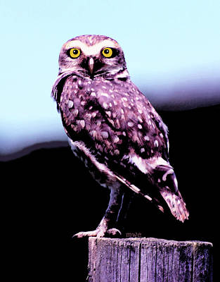 Painting - Buttowing Owl by Marian Cates
