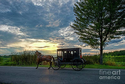 Photograph - Buggy At Sundown by David Arment
