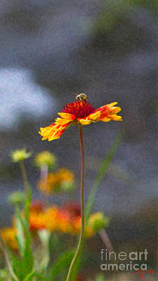 Photograph - Buzzing Blissfully Methow Valley Flowers By Omashte by Omaste Witkowski