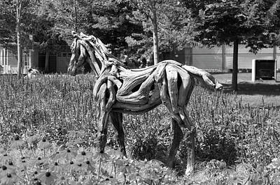Gatineau Park Photograph -  Bw Of Hope The Colt Sculpture Made Of Driftwood By Heather Jansch. by Bob Corson