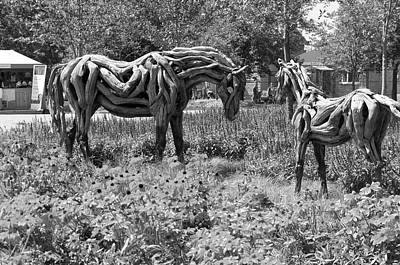 Gatineau Park Photograph - Bw Of Odyssey The Horse And Hope The Colt Sculptures Made Of Driftwood by Bob Corson