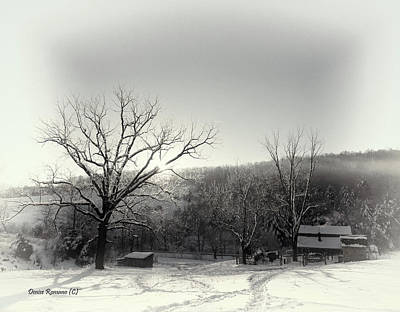 Photograph - Bw Snow Scene by Denise Romano