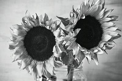 Grateful Dead - BW Sunflowers #002 by Noranne AG
