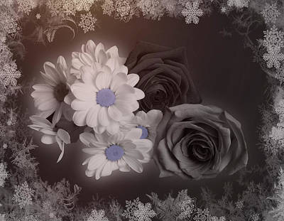 Photograph - Bw Winter Bouquet With Snow by Johanna Hurmerinta