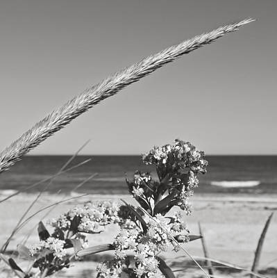 Photograph - Bw8 by Charles Harden