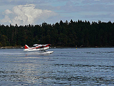 Photograph - By Air And By Sea Vancouver Island by Barbara St Jean