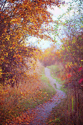 Photograph - By Autumn Path 2 by Jenny Rainbow