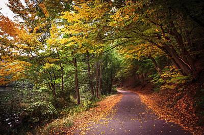 By The Autumn Path Art Print